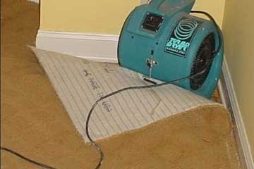 Post-flood floor and sub-floor restorations
